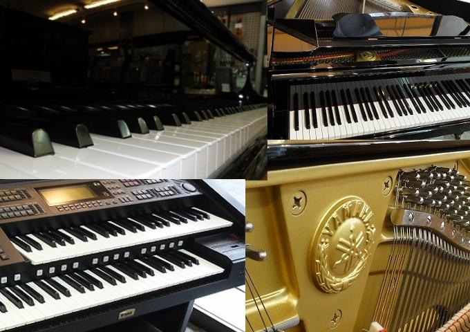 若林楽器店