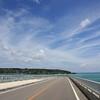 【8/7・8】新風館で南国気分『沖縄・島唄ライブ2010』