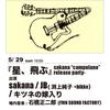 【2011/5/29】sakana5年ぶりの新作リリースパーティー!JB(渕上純子+bikke)、キツネの嫁入りとの3マンライブ!【@METRO】