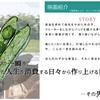 【2011/8/20】夏の風物詩!カモシネマが今年も開催!今年はあの映画!?