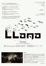 llama_flyer.jpg