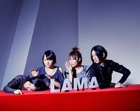 20110228_lama_v.jpg
