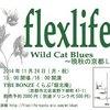 【2014/11/24(月・祝)】夫婦ユニット「flexlife」の秋ツアー・晩秋の京都Liveが決定!