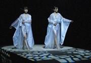 kimonoshow2.jpg