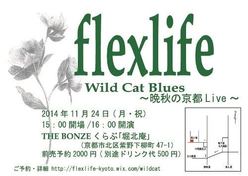flexlife.jpg