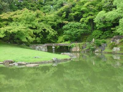 fujimoto201307(2)-4.jpg