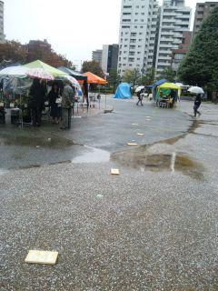 akasaka2011-11-47.jpg
