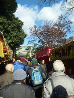akasaka201112-37.jpg