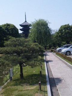 akasaka201205-37.jpg