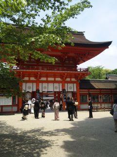 akasaka201205-52.jpg