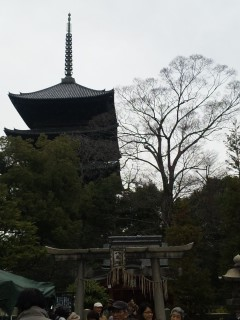 akasaka201212-4.jpg