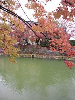 moriyasu201412-3(4).jpg